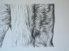 Back legs