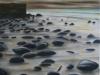 Pebbles 2 (2012)